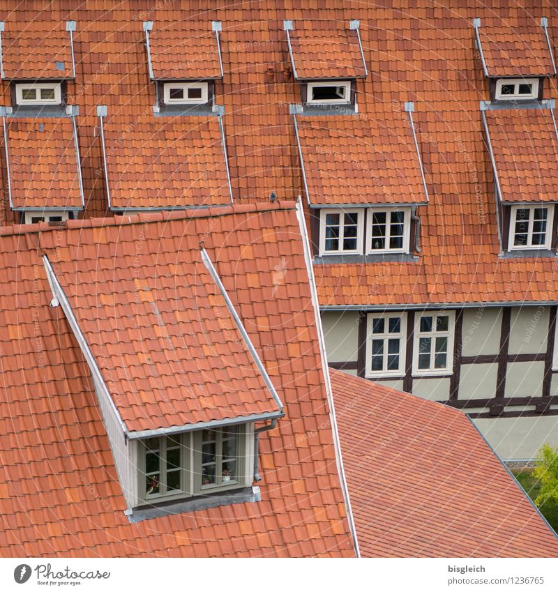 Vacation & Travel City Red House (Residential Structure) Window Architecture Car Window Europe Roof Federal eagle Old town City trip Roofing tile Half-timbered house