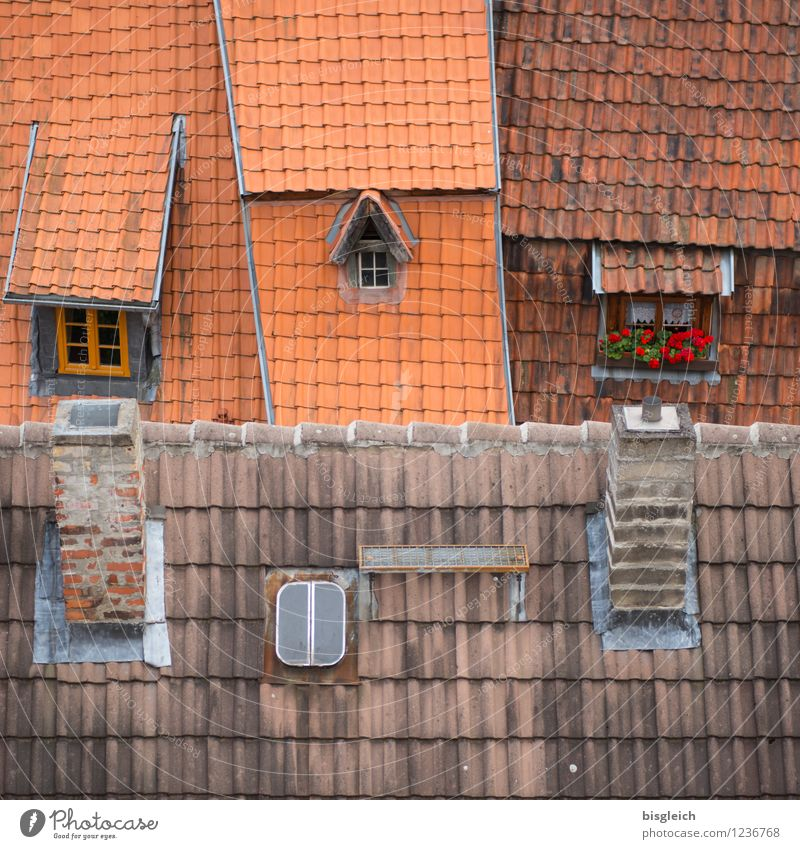 City Red House (Residential Structure) Window Architecture Building Europe Roof Federal eagle Old town Chimney Roofing tile
