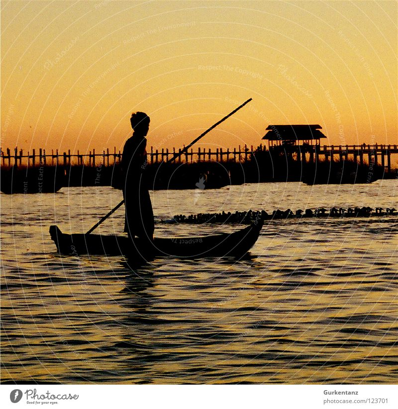 Burmese Nut Shell Myanmar Fisherman Watercraft Lake Sunset Dusk Asia Stick Navigation Bridge Beautiful Motor barge Gold Shadow Silhouette