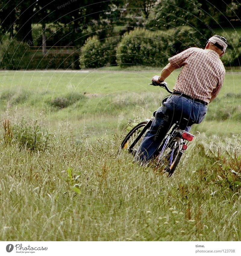 A will. One way. A destiny. Cycling Bicycle Masculine Man Adults Senior citizen Grass Park Meadow Transport Lanes & trails Green Dangerous Creativity Whimsical