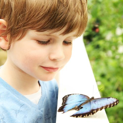 Human being Child Blue Beautiful Relaxation Animal Face Eyes Boy (child) Family & Relations Exceptional Garden Hair and hairstyles Park Contentment Wild animal