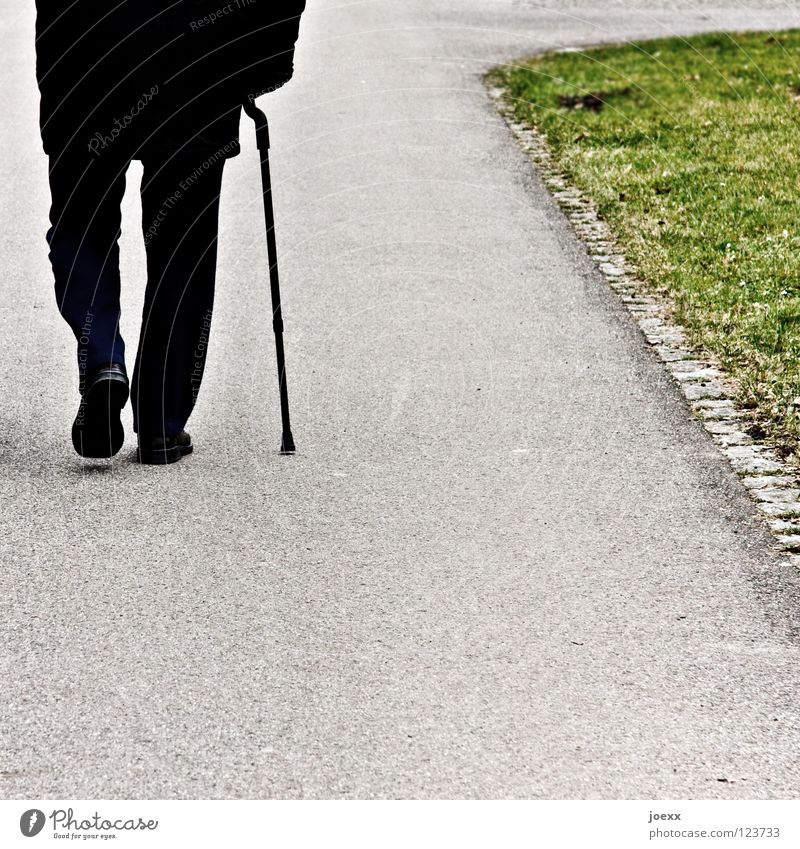 Human being Man Old Green Black Loneliness Autumn Senior citizen Lanes & trails Gray Going Back 60 years and older Pain Male senior Stick