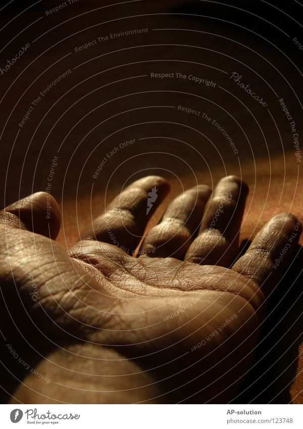 Human being Hand Old Dark Death Orange Fear Arm Gold Fingers Grief Dangerous Threat Creepy Obscure Wrinkles