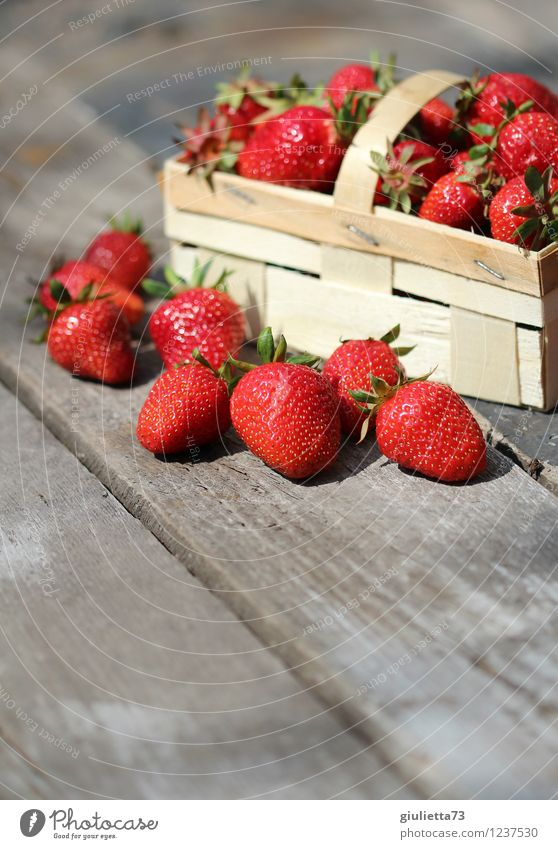 Summertime is strawberry time! Food Nutrition Organic produce Vegetarian diet Garden Nature Beautiful weather To enjoy Fresh Healthy Delicious Juicy Red Happy