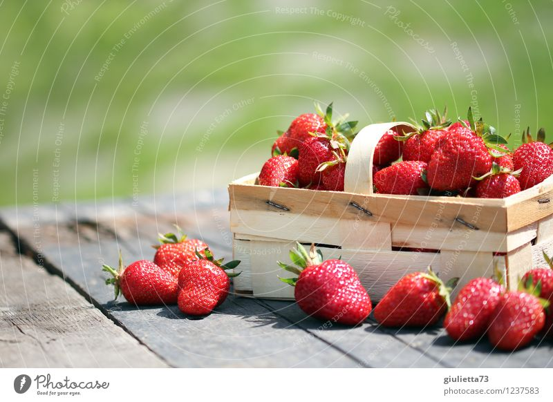 ...perfect for the summer figure Food Fruit Strawberry Nutrition Organic produce Vegetarian diet Garden Nature Summer Beautiful weather Fresh Healthy Delicious