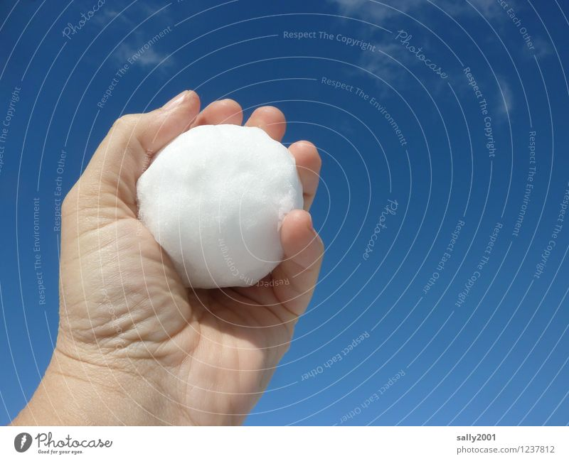 Sky White Hand Joy Winter Cold Snow Wet Threat To hold on Firm Throw Resolve Refrigeration Snowball fight Guelder rose