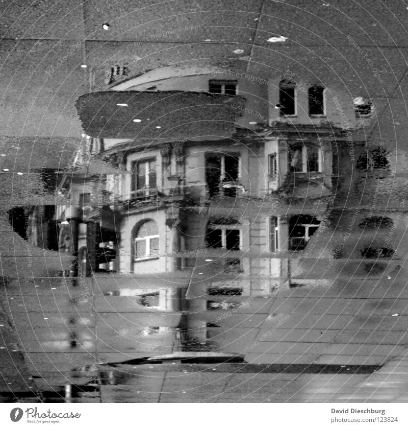 Ghostcastle **60** House (Residential Structure) Window Window frame Traffic light Puddle Black Balcony Reflection Frankfurt Main Midday Building Incomplete