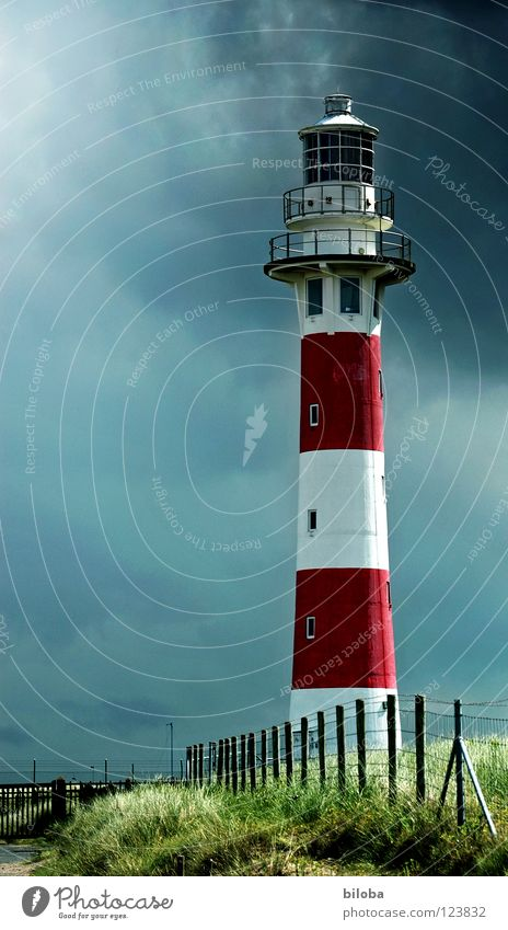 Lighthouse IV Autumn Orientation Accompany Companion Social Going Fog Seagull Ocean Green Dark Radiation Horizon Ambiguous Wanderlust Grief Conduct Direction