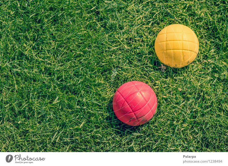 Petanque game in the garden Nature Vacation & Travel Green Summer Relaxation Red Yellow Grass Sports Playing Garden Park Leisure and hobbies Action Success Lawn