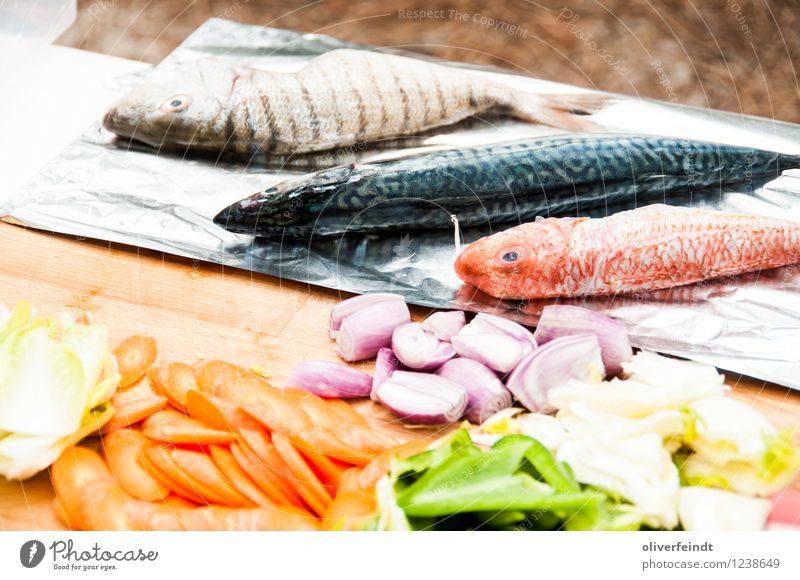 Surfing X Food Fish Vegetable Nutrition Dinner Vacation & Travel Camping Summer Summer vacation Environment Nature To enjoy Cooking Carrot Onion Pepper