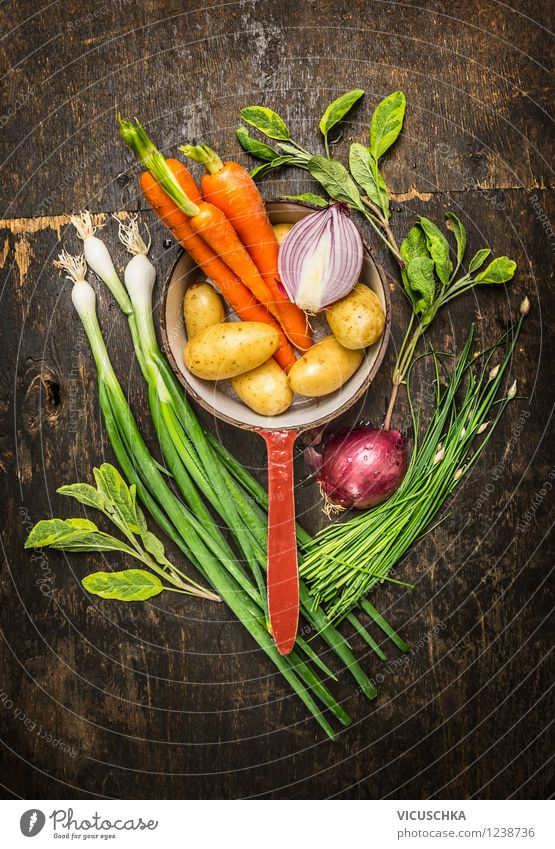 Vegetarian Cooking with Fresh Garden Vegetables Food Herbs and spices Nutrition Lunch Dinner Organic produce Vegetarian diet Diet Pot Style Design