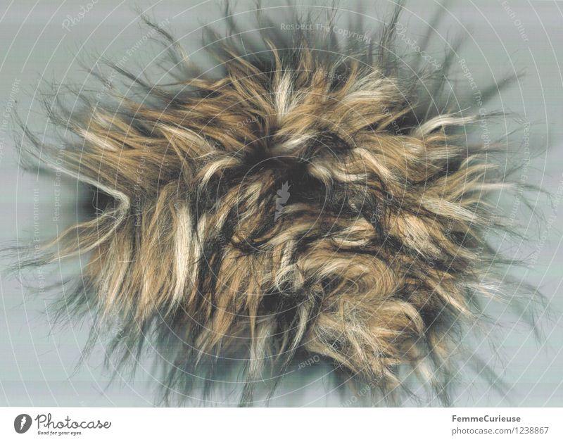 Puschel Art Work of art Creativity Soft Fur jacket Hair Strange Hair and hairstyles Wig Tattered Multicoloured Dappled Colour photo Artificial light Blur