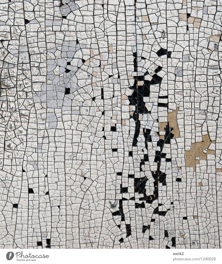remnants Work of art Painting and drawing (object) Old To dry up Small Near Dry Decline Transience Destruction Trace of color Crack & Rip & Tear Part