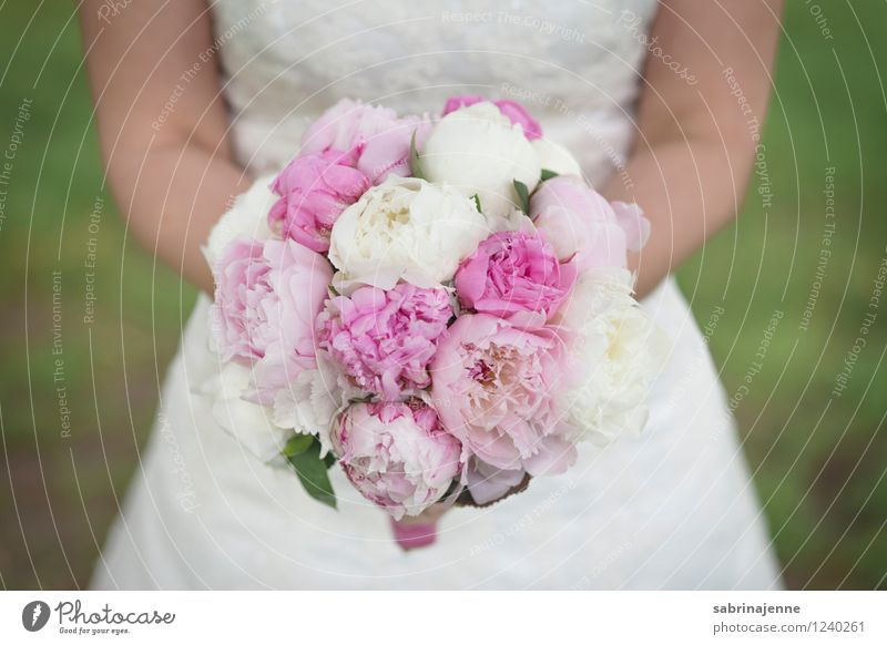 bridal bouquet Dress Bright Emotions Happy Happiness Anticipation Together Love Wedding Bride Bouquet Flower Peony Colour photo Exterior shot Day