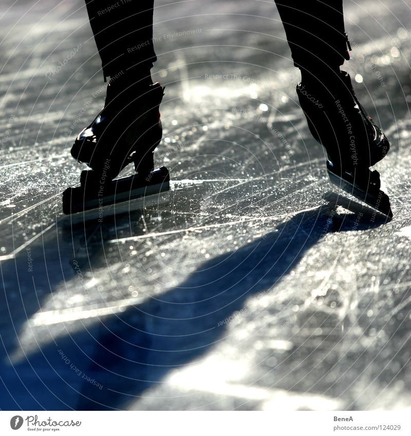 skating Ice-skates Ice-skating Light Silhouette Dark White Black Winter sports Walking Sun Shadow Contrast Bright