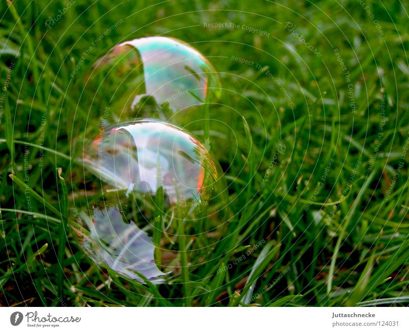 With a prick everything is gone Soap bubble Glittering Rainbow Playing Green Dazzling Blow Dream Magic Plop! Caustic solution Transience Peace Wind Sphere