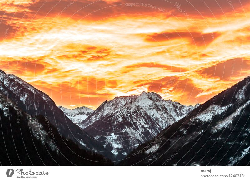 The sky's on fire! Sky Clouds Sunrise Sunset Spring Autumn Climate Weather Beautiful weather Warmth Alps Mountain Peak Snowcapped peak Apocalyptic sentiment