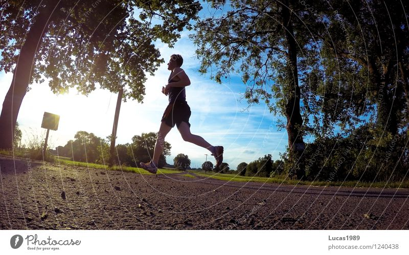 Jogger II Sports Fitness Sports Training Track and Field Sportsperson Jogging Running sports Racing sports Sporting event Human being Masculine Young man