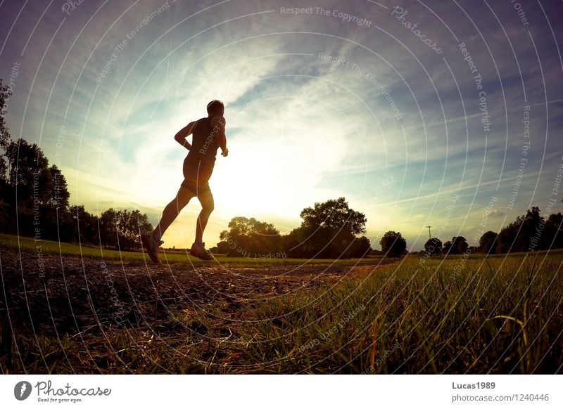 Into the sunset... Sports Fitness Sports Training Track and Field Sporting event Jogging Racing sports Human being Masculine Young man Youth (Young adults) Man
