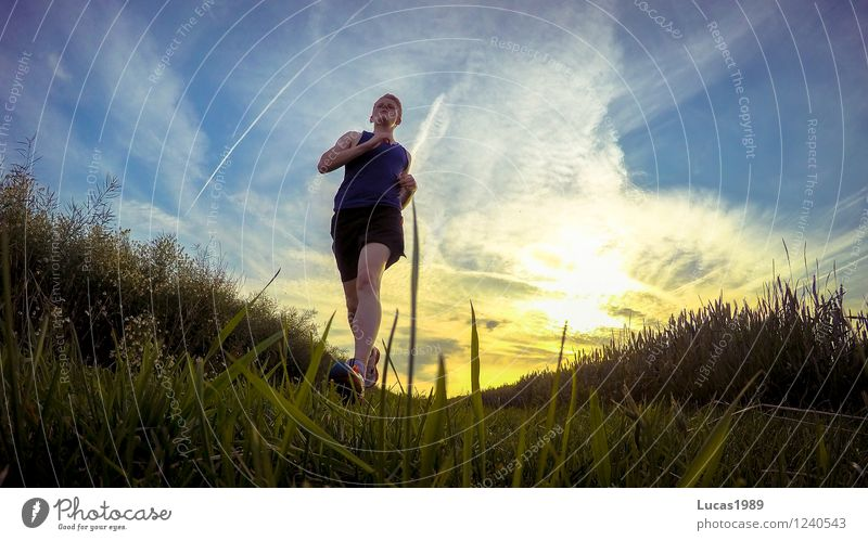Human being Sky Nature Youth (Young adults) Man Young man 18 - 30 years Adults Environment Meadow Grass Sports Healthy Park Masculine Field