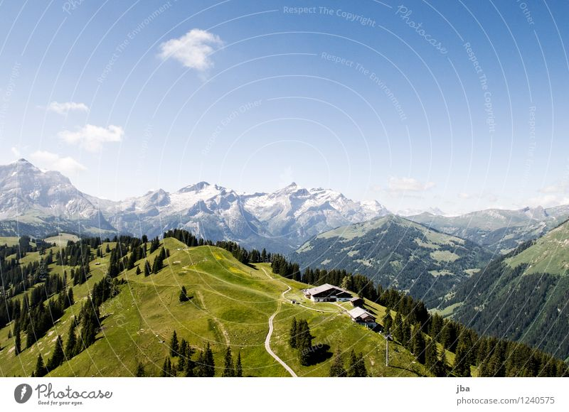 Wispile near Gstaad Lifestyle Well-being Relaxation Calm Leisure and hobbies Trip Summer Mountain Sports Paragliding Sporting Complex Nature Landscape Elements