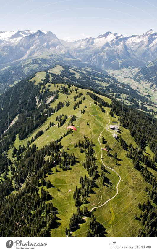 Wispile - Staldenhorn - Reason IV Well-being Contentment Relaxation Calm Trip Freedom Summer Mountain Sports Paragliding Sporting Complex Nature Landscape