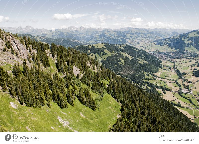 Sky Nature Summer Relaxation Calm Far-off places Forest Mountain Sports Freedom Flying Rock Contentment Air Aviation Tall