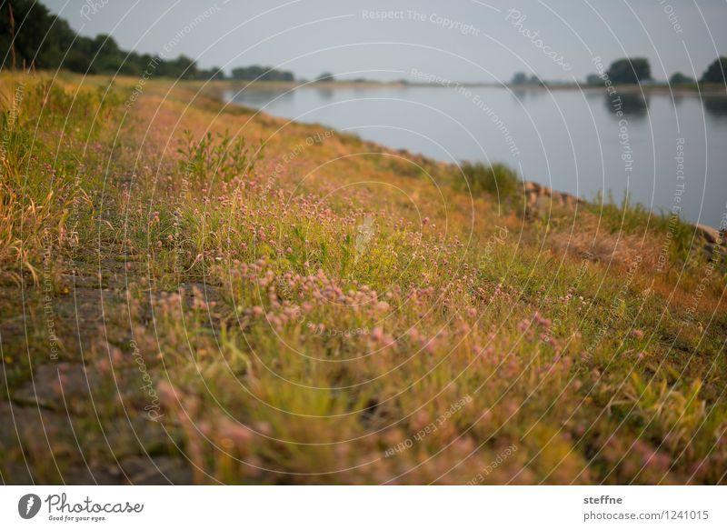 Vacation & Travel City Landscape Travel photography Tourism Skyline