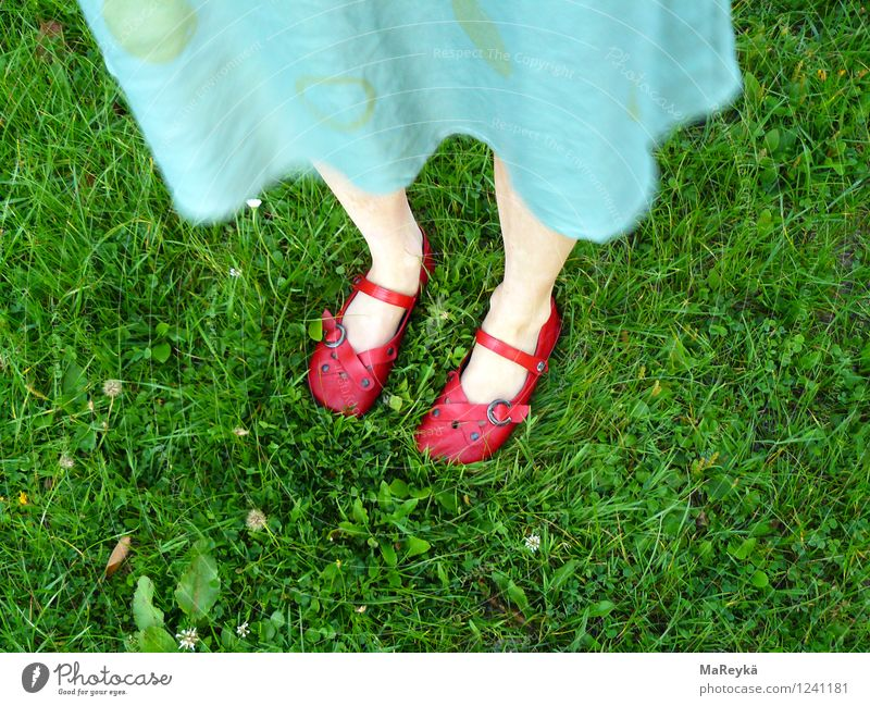 Dorothy and the Wizard of Oz Nature Beautiful weather Grass Garden Park Meadow Dress Footwear Sandal Ballerina straps magic shoes Stand Natural Green Red
