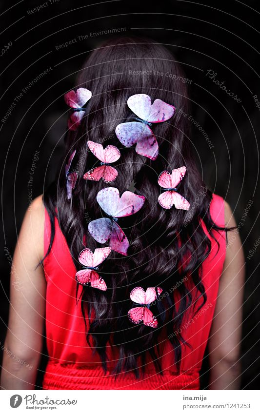 butterflies Beautiful Hair and hairstyles Human being Feminine Youth (Young adults) Adults 1 18 - 30 years 30 - 45 years Spring Summer Accessory Black-haired