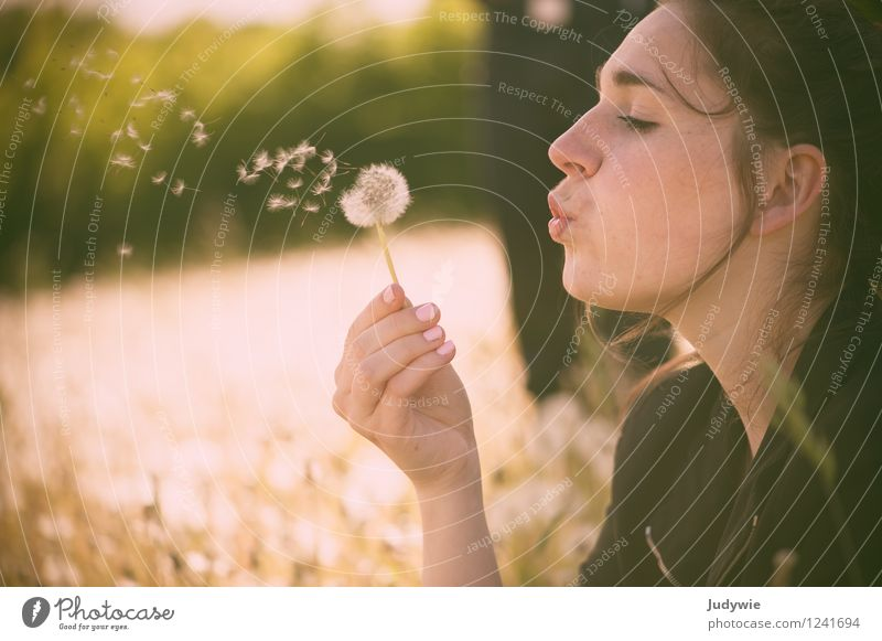 Childhood memory | blowing dandelions Beautiful Relaxation Calm Summer Human being Feminine Young woman Youth (Young adults) Adults 13 - 18 years 18 - 30 years