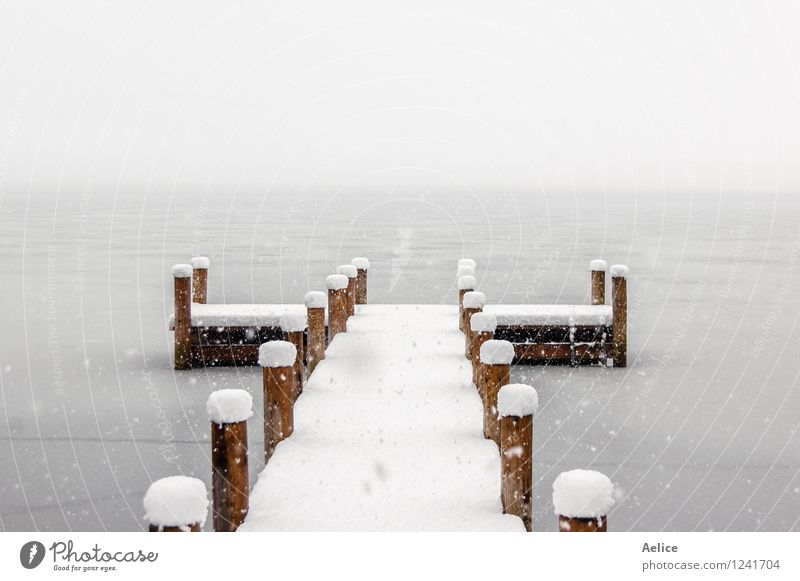 Empty pier on a cold foggy winter morning Nature Landscape Winter Climate Weather Beautiful weather Storm Snow Glacier Lakeside Lago di Piano Italy Europe