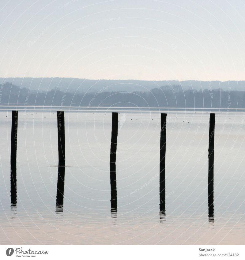 Invitation to sit on piles Lake Reflection Horizon Moody Waves Surface of water Pastel tone Tree Forest Weekend Hiking Morning Dusk Twilight Rhythm Smoothness