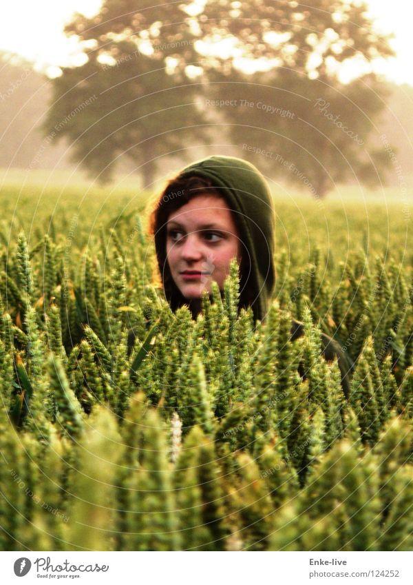 corn girl Wheat Tree Green Horizon Loneliness Yellow Grain Nature Blur left Hide