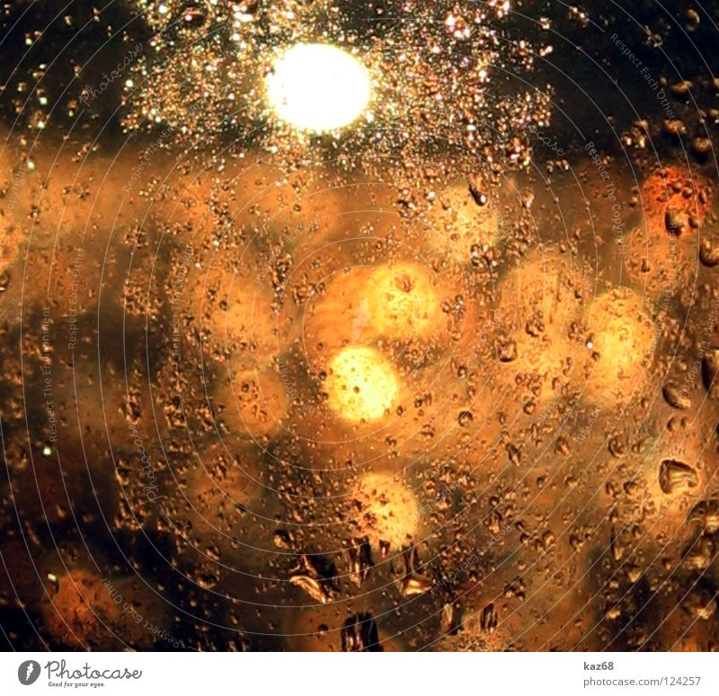 shower of gold Drops of water Window Wet Damp Rich Background picture Light Yellow Red Glittering Water Rain Window pane Flare Precipitation Patch of light