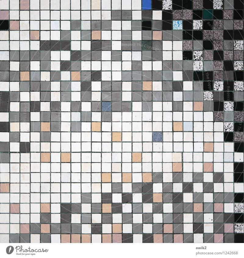 Small tiles Art Work of art Mosaic Tile Together Retro Many Crazy Wild Gray Orange Black White Design Square Gray-blue Pink Mixed Muddled Precision Arrangement