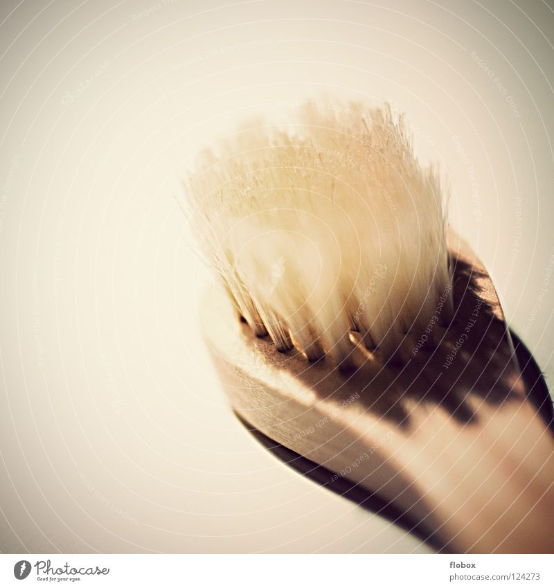 Beautiful Relaxation Wood Hair and hairstyles Cleaning Clean Bathroom Wellness Massage Household Brush Bristles Toothbrush