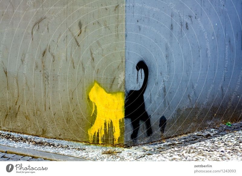 Cat City House (Residential Structure) Wall (building) Graffiti Art City life Copy Space Corner Illustration Sidewalk Image Street art Drawing Painted