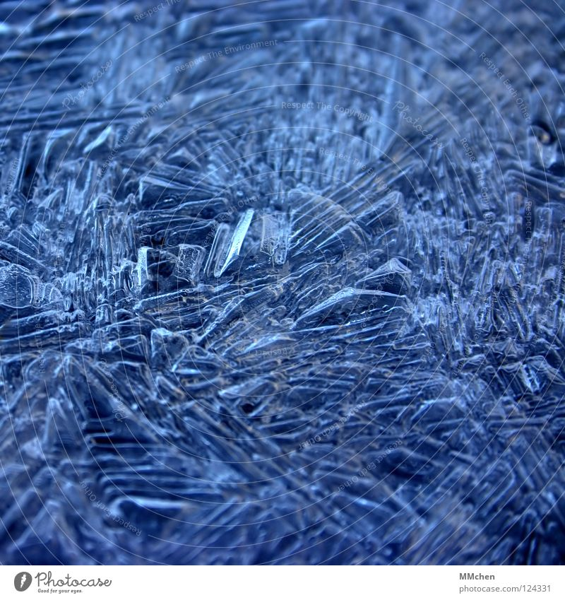 Eifel: -2°C Frozen Cold Ice crystal Arrangement Motionless Winter ossified Frost Crystal structure crystallized 0° freezing point Weather Blue
