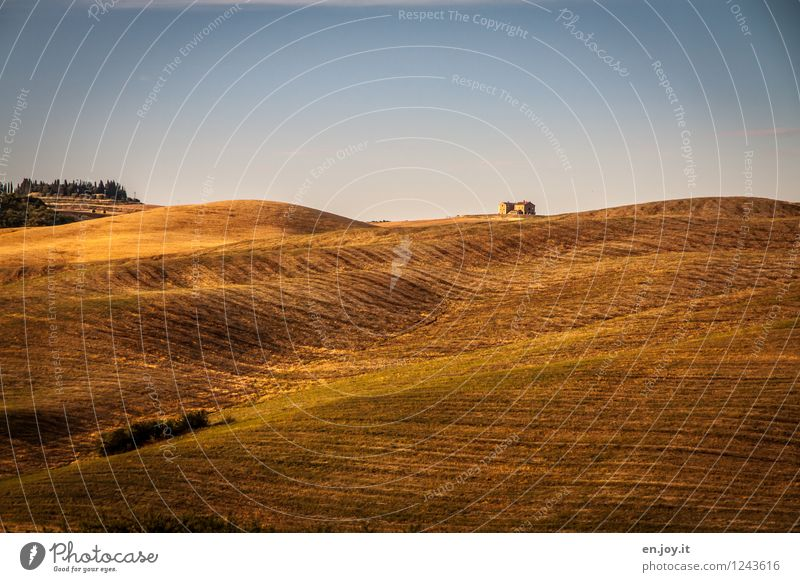 Sky Vacation & Travel Blue Summer Loneliness Landscape Calm Orange Contentment Field Growth Climate Joie de vivre (Vitality) Italy Hill Agriculture
