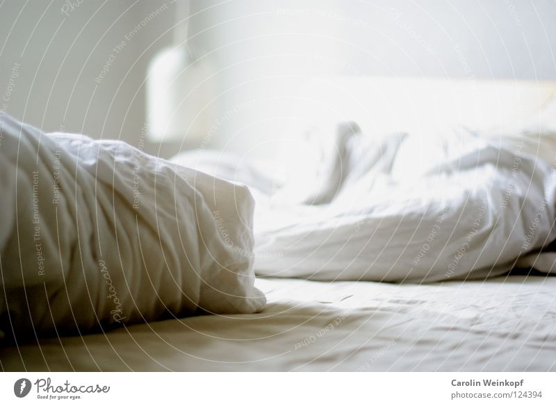 White Lamp Bright Sleep Bed Longing Wrinkles Bedclothes Blanket Cushion Sheet Bedroom Wake up Midday Pillow