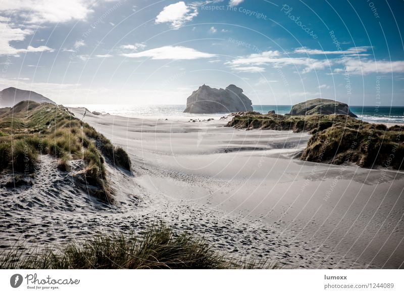 Nature Vacation & Travel Water Ocean Landscape Beach Coast Sand Rock Island Dune New Zealand Marram grass South Island