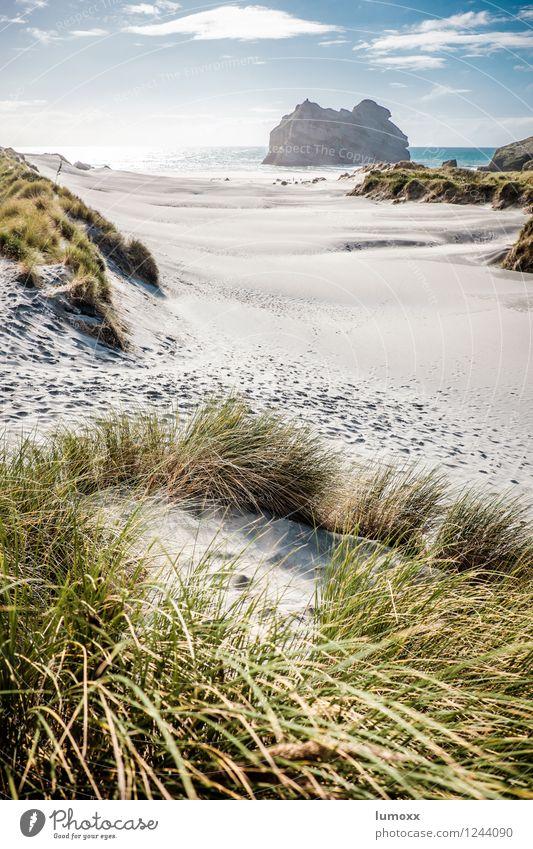 Endless buzzer Sand Clouds Summer Beautiful weather Grass Coast Beach Ocean Pacific Ocean Island New Zealand South Island Illuminate Kitsch Blue Brown Green