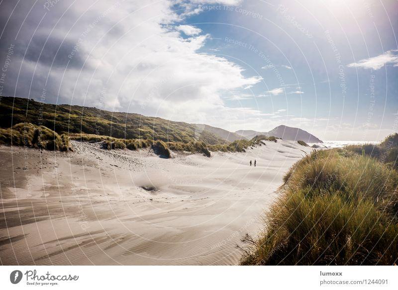 Dunewalker Nature Landscape Sand Sky Clouds Storm clouds Summer Grass Coast Beach Ocean Pacific Ocean Island New Zealand South Island Stand Blue Gold Green