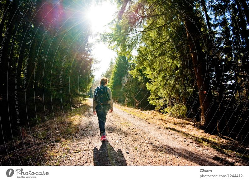 walk in the woods Lifestyle Elegant Leisure and hobbies Vacation & Travel Trip Mountain Hiking Young woman Youth (Young adults) 18 - 30 years Adults Nature