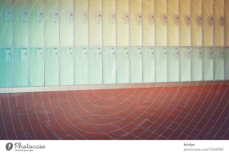 locker design Wall (barrier) Wall (building) Floor covering Terracotta Lockbox Illuminate Esthetic Exceptional Fresh Bright Clean Blue Yellow Red Turquoise