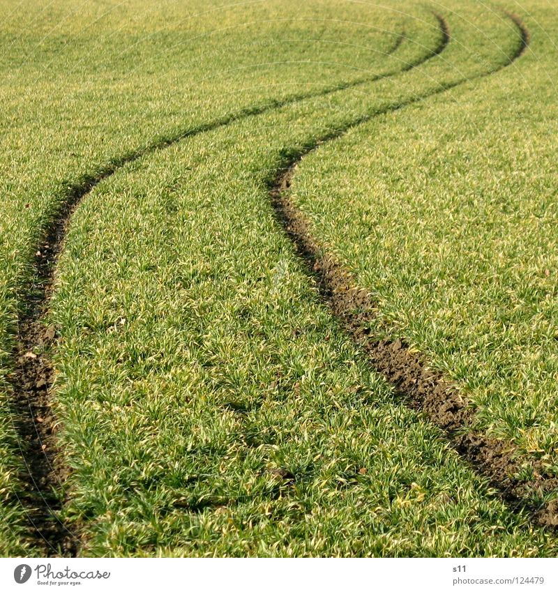Green Meadow Lanes & trails Grass Field Copy Space Waves Crazy Tracks Curve Alcohol-fueled Warped Across Undulating Undulation Tractor track