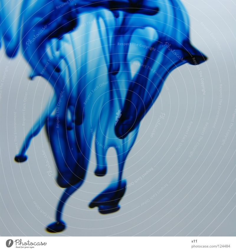 Blue Water White Colour Wet Transience Tracks Fluid Flow Mix Food Food colouring