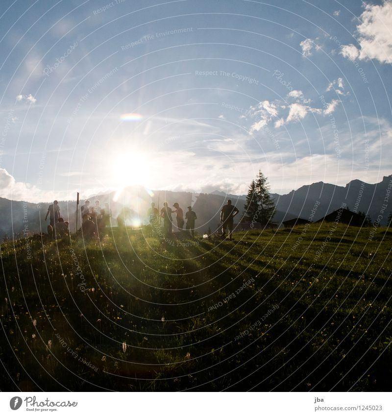 Human being Youth (Young adults) Summer Landscape 18 - 30 years Adults Mountain Meadow Grass Feasts & Celebrations Freedom Group Together Friendship Masculine