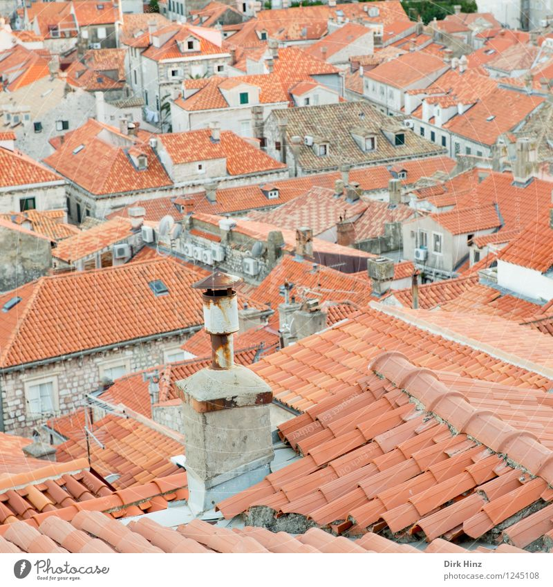 Above the roofs of the old town (Dubrovnik) Town Downtown Old town Building Roof Chimney Tourist Attraction Landmark Monument Authentic Famousness Brown Gray